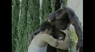 BIG BLACK DADDYS I